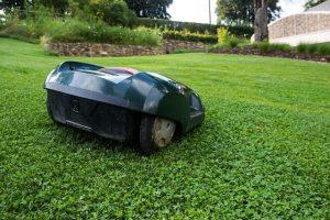 poser et entretenir sa pelouse facilement