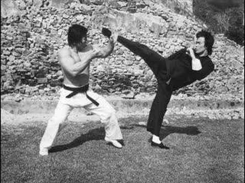 Quel est l'art martial le plus efficace du monde ?